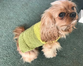 Hand knitted dog jumper.