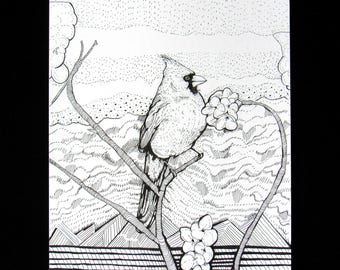 Cardinal Pen and Ink Drawing