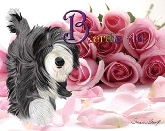 Hand-drawn Bearded Collie greeting card, background pink roses.