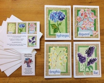 Southern Spring Flowers - Pack of 8 Cards