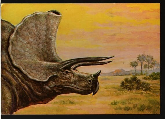 Triceratops - Matthew Kalmenoff - 1985 - Vintage Postcard