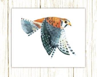 Kestrel Print -- bird art -- colorful bird art by stephanie fizer coleman illustration