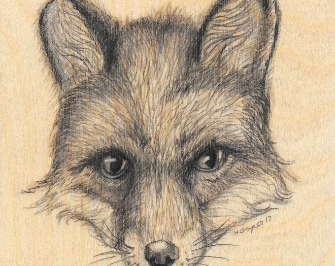 Fox Face - Original drawing on wood by Mr. Hooper of Nashville, Tennessee