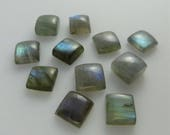 Labradorite - Square Cabochons, Set of 11 cabs, 45.20 cts total - Approx 9x9 each (L157)