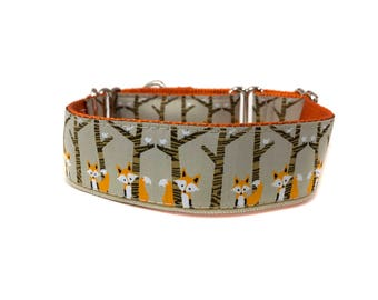 Wide 1 1/2 inch Adjustable Buckle or Martingale Dog Collar in Foxes