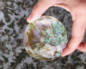Abalone Circles  for sale -