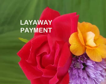 RESERVED FOR RIA - Layaway Payment Listing