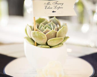 Flag Escort Cards, Flag Place Cards- Succulent Escort card, Favor Place Card, Succulent Place Card