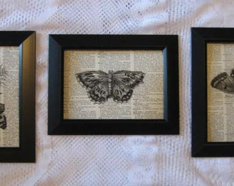"""Vintage Dictionary Page Prints - Butterflies  - Set of 3 - 5"""" x 7"""""""