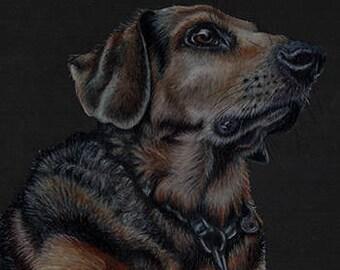 Dog Profile Art Note Card