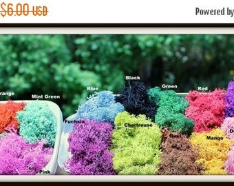 Save 15% Reindeer moss-Preserved lichens-2 oz bag in your color choice-Deer foot Moss-Black-Mango-Light blue and more 2 Oz. Bag Prese...