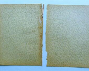 1901 Antique Decorative End Papers