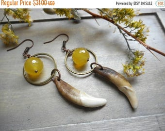 SALE The Full Moon Earrings . Coyote fangs and Golden Citrine rustic earrings