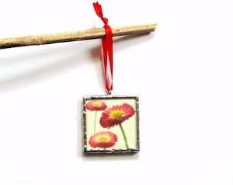 Summer flower ornament, photo ornament, stained glass ornament, straw flower, flower photography, art ornament, everlasting flower