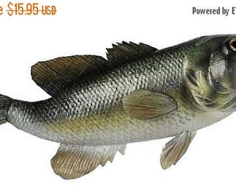 SUPPLY SALE 14.5 inch Large Mouth Bass MK2045, Deco Mesh Wreath Decor