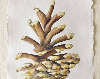 Original watercolour painting of a pine cone autumnal painting seedheads nature illustration A4