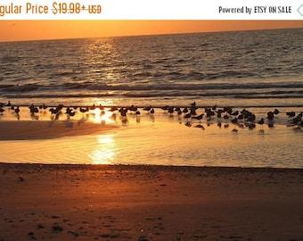 15% OFF Galveston Beach Sunset Landscape Art, Original Signed Print, Free Shipping, Sunset Landscape on Galveston Beach, Matted Print