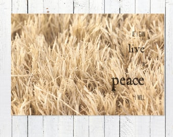 Modern Farmhouse Art | Modern Rustic Art Print | Inspirational Quote Photography Prints | Neutral Wall Art Gold Art Print | Farmhouse Decor