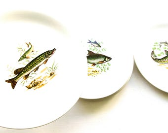 Set of 6 Vintage Fish Design Plates - Made by Crown Devon, England
