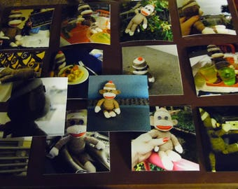 Sock Monkey Trading Cards