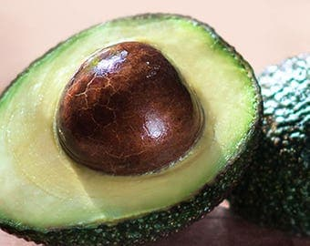 RESERVED for Tina. Polymer clay avocado.