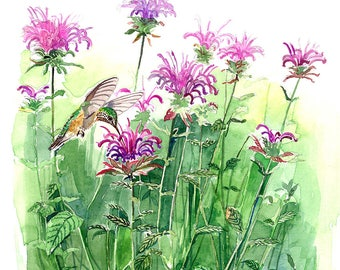 Original watercolor painting 8.5 x 11 inches - Hummingbird garden, in watercolor