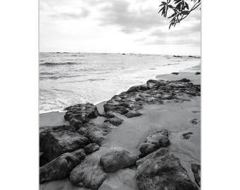 Black & White Photography 'The Coastline' by Meirav Levy - Coastal Art Tropical Beach Decor on Metal or Plexiglass