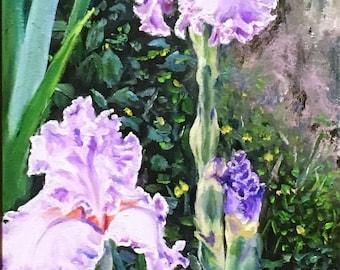 "14 X 7 Fine Art Original Painting, Floral Painting ""Ruffled Iris"""