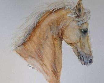 Palomino horse in watercolors