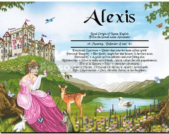 Princess Name Meaning Origin Print Name Personalized Certificate 8.5 x 11 Inches Customized With Any Name