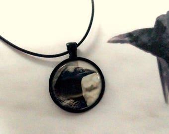 Raven black Raven Necklace