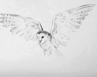 original flying barn owl 18x24 pencil and charcoal owl drawing owl