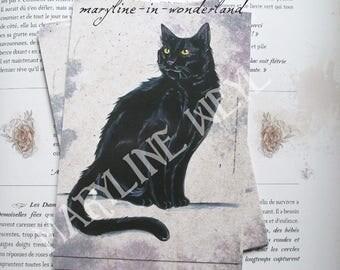 x 1 acrylic black cat postcard