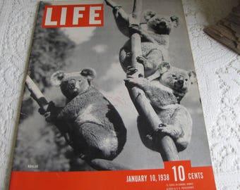 Life Magazines 1938 January 3 Koalas Vintage Magazines and Advertising