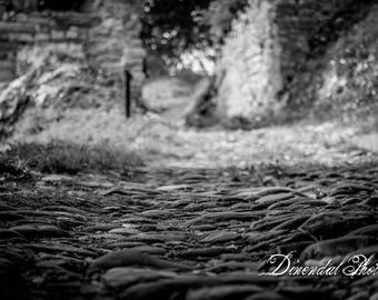 Photo exposure black and white pave way