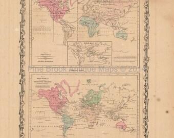 Animal Kingdom Antique Map Johnson 1862