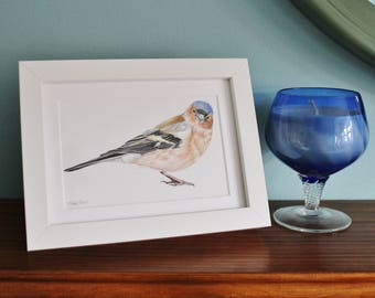 Chaffinch Bird Watercolour Painting - Garden Bird - Framed Chaffinch giclee print - Bird Art Poster - Picture and gift for the home
