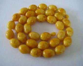 Egg yolk Butterscotch  Baltic Amber necklace, ca. 74 grams Bernsteinkette Bernstein 老琥珀 Collier