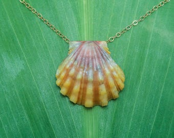 Purple and yellow sunrise shell necklace