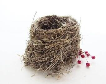 Real Found Bird Nest / Nature Find / Nature Teaching Aid / Natural Craft Supplies / Nest #60