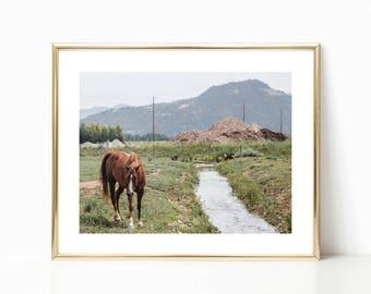 Mountain Bohemian Decor // Boho Decor Art // Western Horse Photo // Bohemian Wall Art // Western