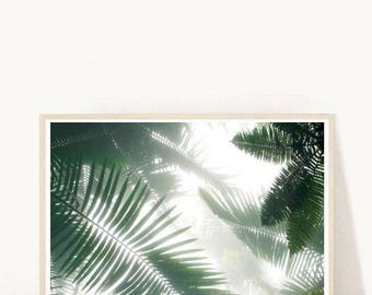 Palm Print, Monochrome Print,Tropical Leaf Print, Scandinavian Print, Printable Art,  Instant Download, Home Decor,  Wall Decor