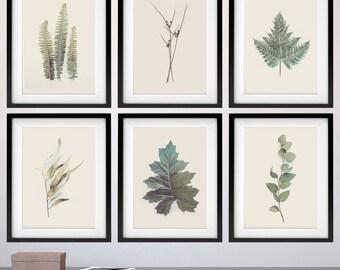 Set of Botanical Prints, Print Set Botanical, Set of 6 Prints, Leaves, Ferns, Small Prints, Botanical, Art Prints, Wall Art, Printable Art