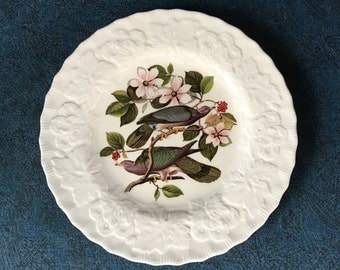 Vintage Alfred Meaking Birds of America Pigeon Luncheon Plate, Audubon Society