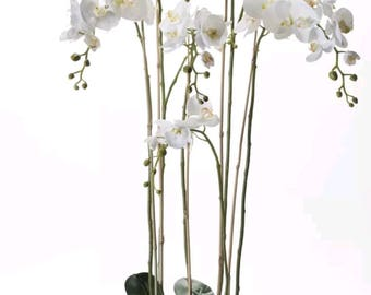 Phalaenopsis Orchid Plant-5ft Tall-Faux-Silk-Artificial-Plastic-Orchid Plant-Interior Decor