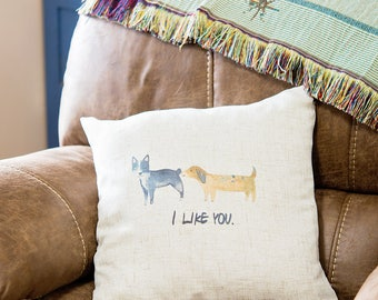 """Funny Dog Pillow Cover - I Like You Throw Pillow Case - 18"""" Square Cover - Gift for New Home - Home Decor - Insert NOT Included"""