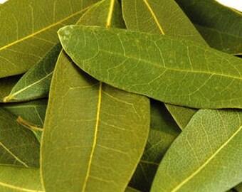 California bay leaves (fresh, raw, wild)