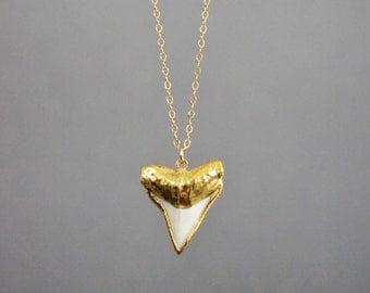 Shark Tooth Necklace || Real Shark Tooth Necklace || Gold Shark Tooth Necklace || 14k Gold Filled