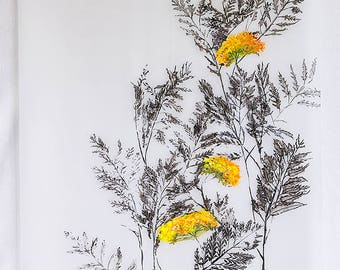 painting on paper: tansy