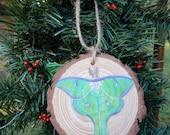Luna Moth Hand painted wood slice ornament